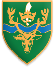Chingford School Shield